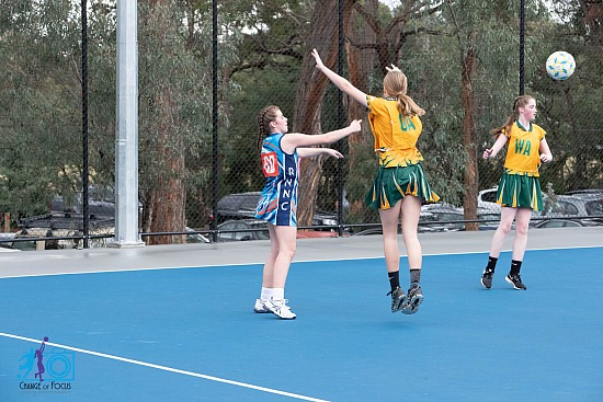 Ringwood North Netball Semi Final