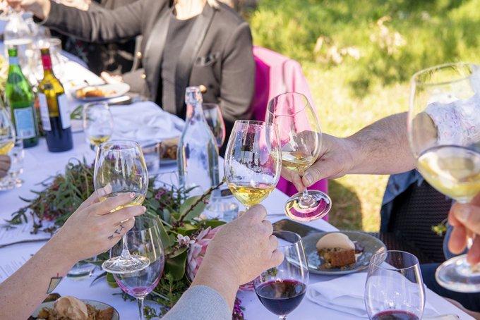 Glasses Cheers Organic wine