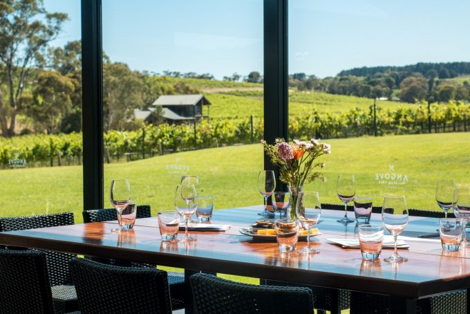angove mclaren vale group wine tasting