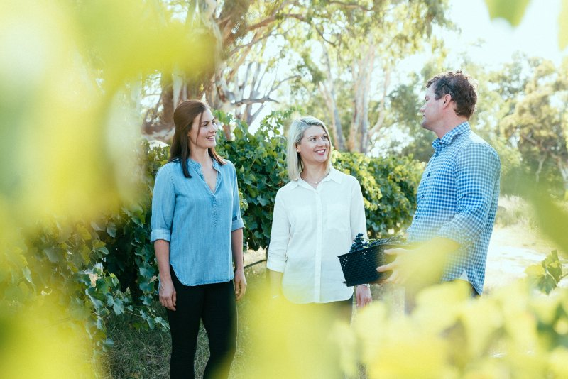 angove mclaren vale family siblings philosophy