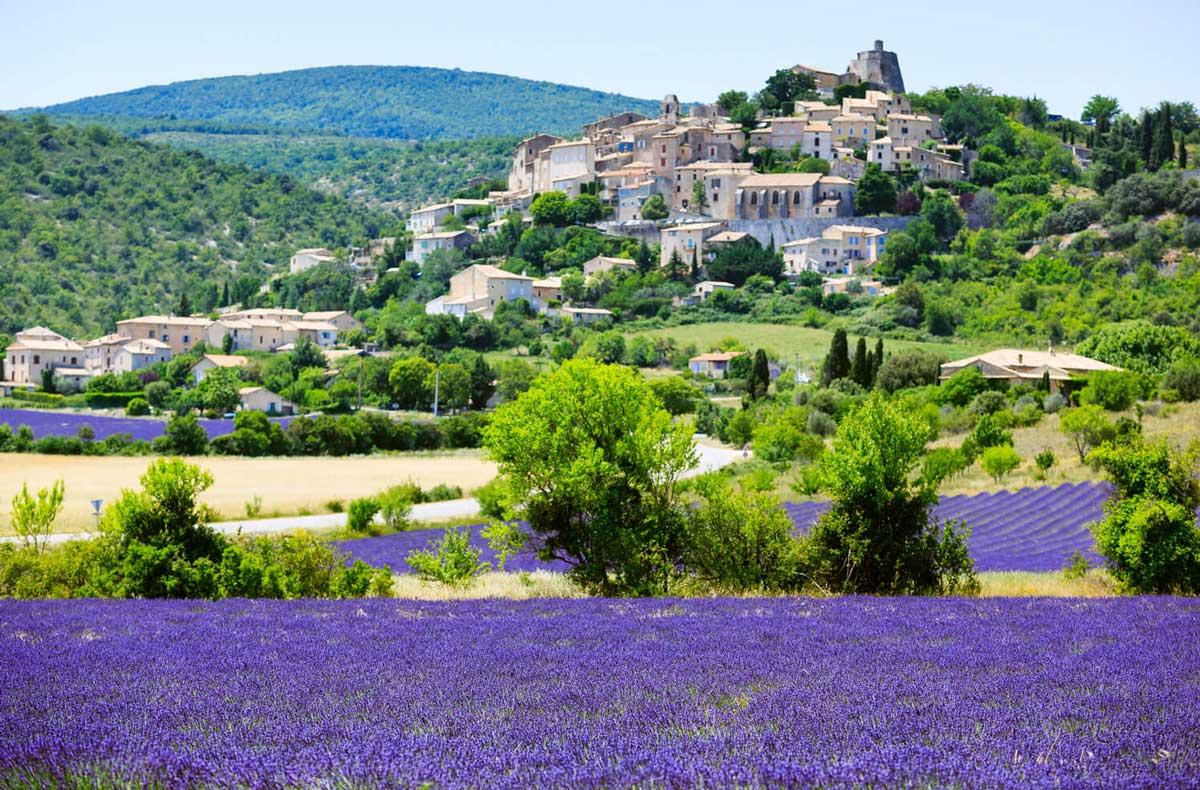 Lavendette Rose Wine
