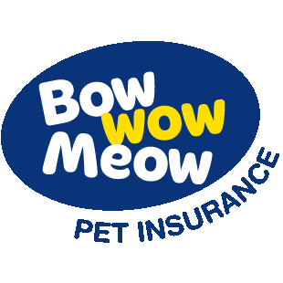 Bow Wow Meow Promo Codes July 2019