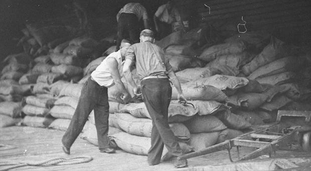 Aboriginal labour in Sydney