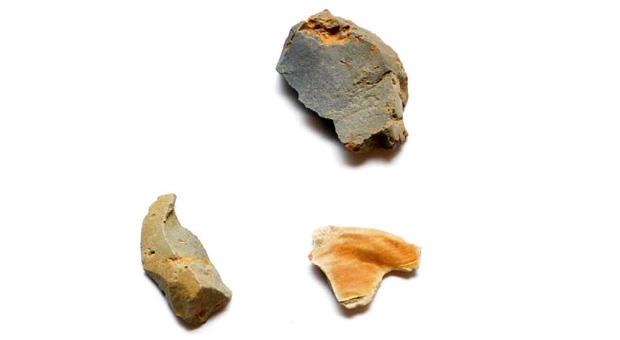 Stone artefacts from the Wynyard Walk Aboriginal campsite