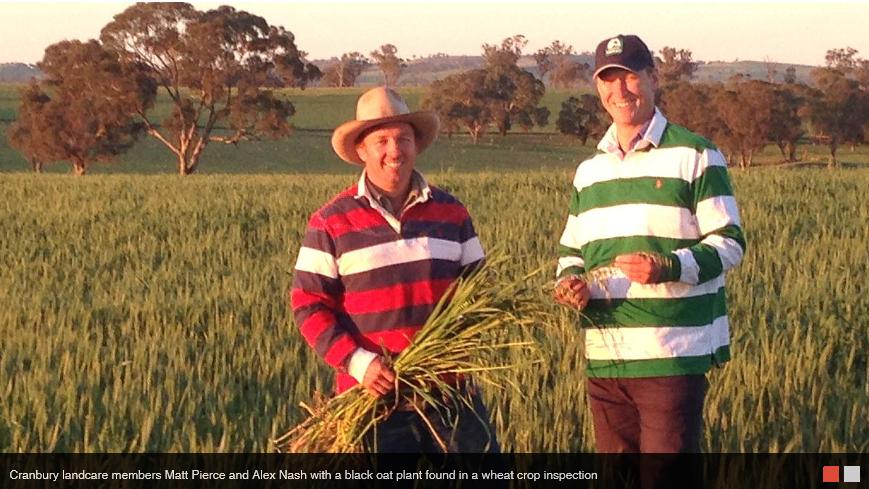 farmers tackling herbicide resistance