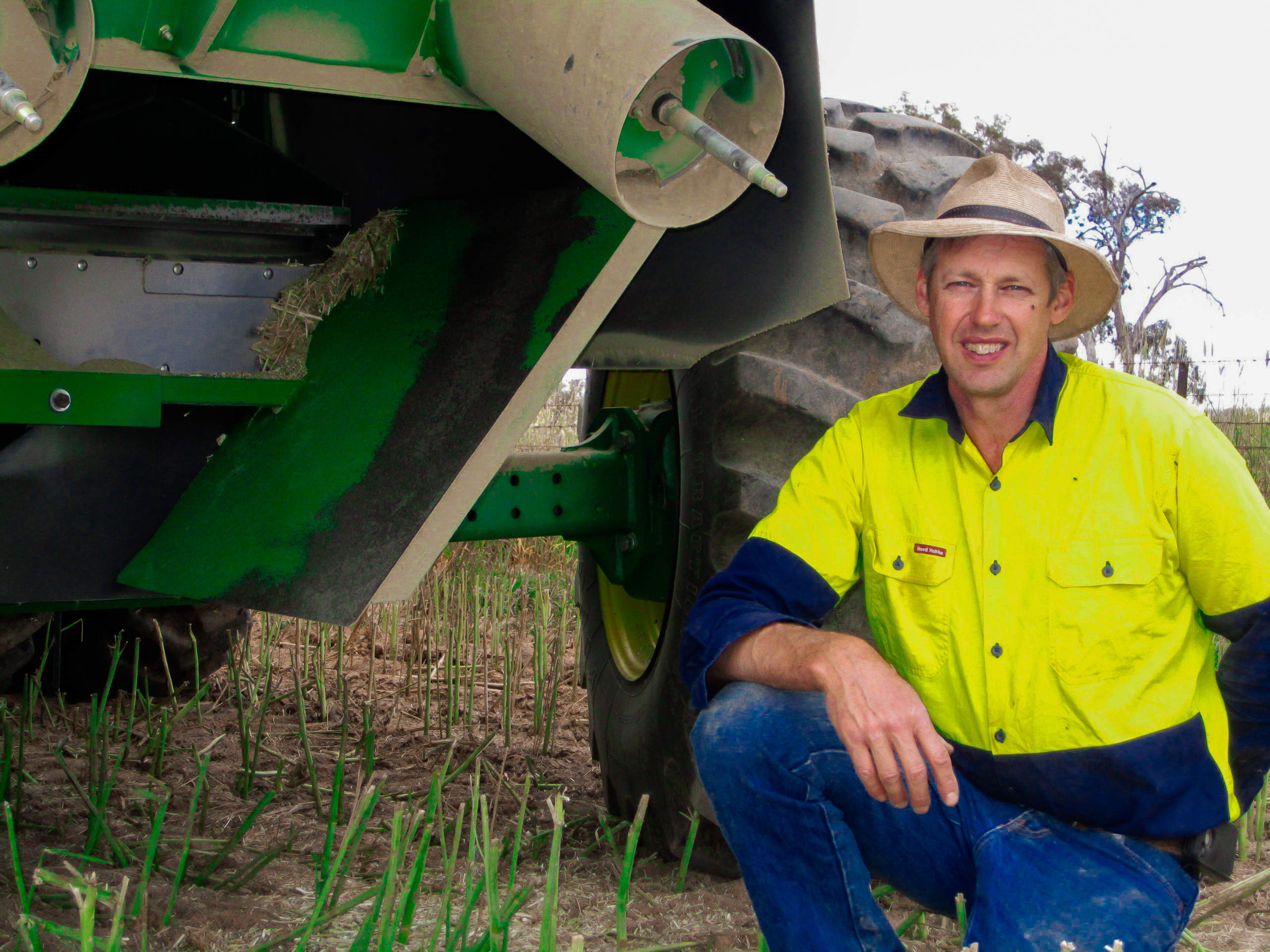 Grazing resistant ryegrass key to weed control success for Scholz family