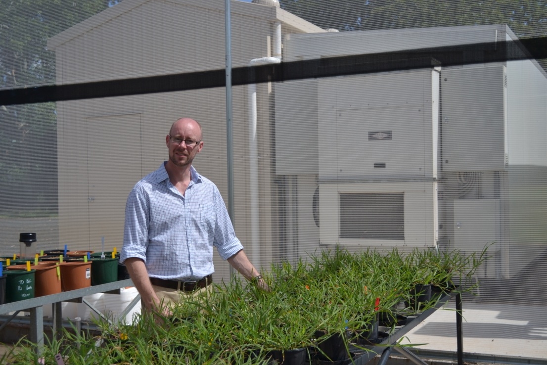 DAFF senior research scientist, Dr David Thornby, said herbicide resistance can occur in weeds on grain farms and in the connecting corridors across the landscape, and transfer from one site to another can easily occur.