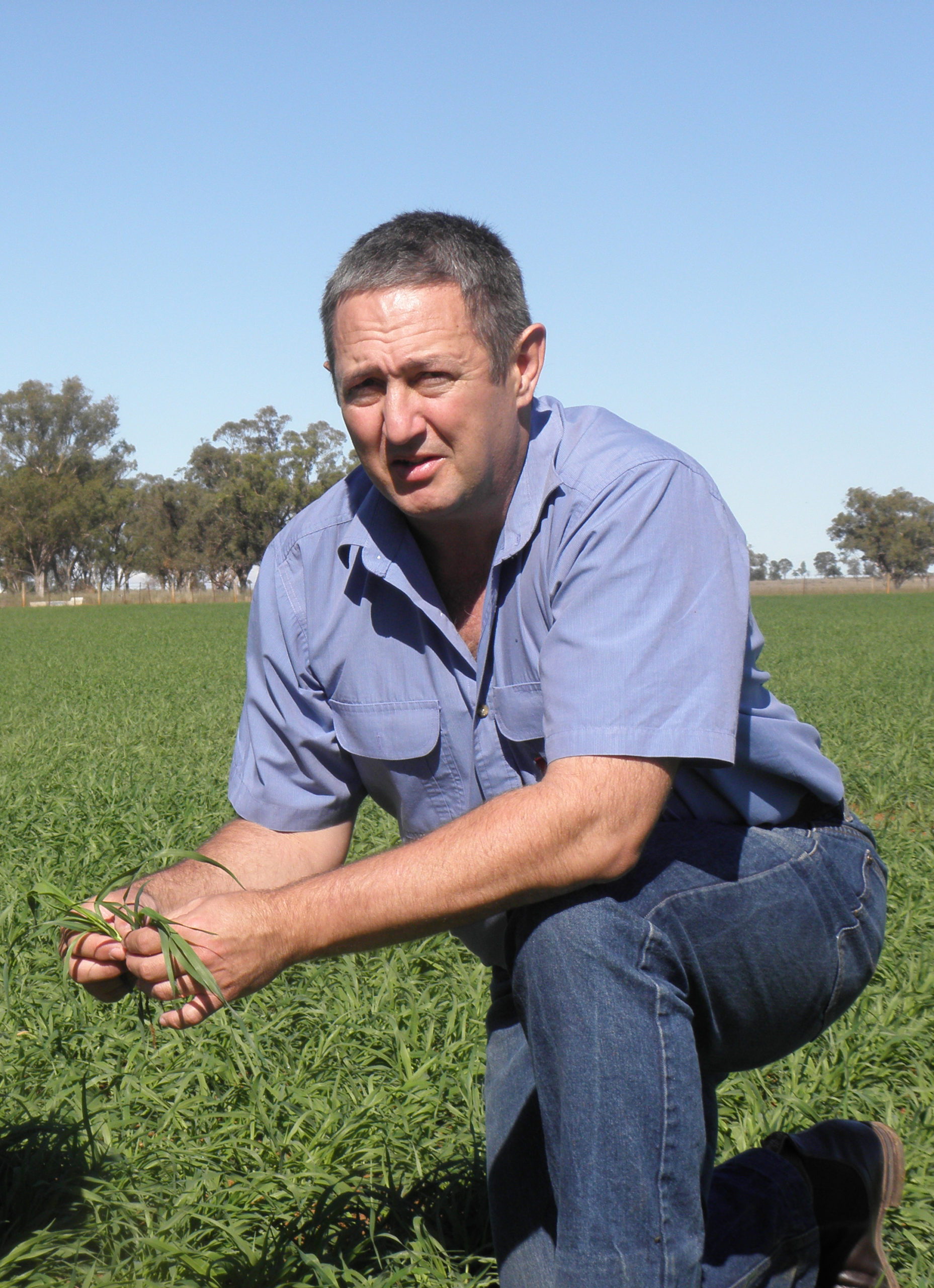 DPI NSW weeds technical specialist, Tony Cook, suggests using pre- and post-emergence herbicides early in the fallow phase to prevent herbicide resistant weeds setting large numbers of seed.