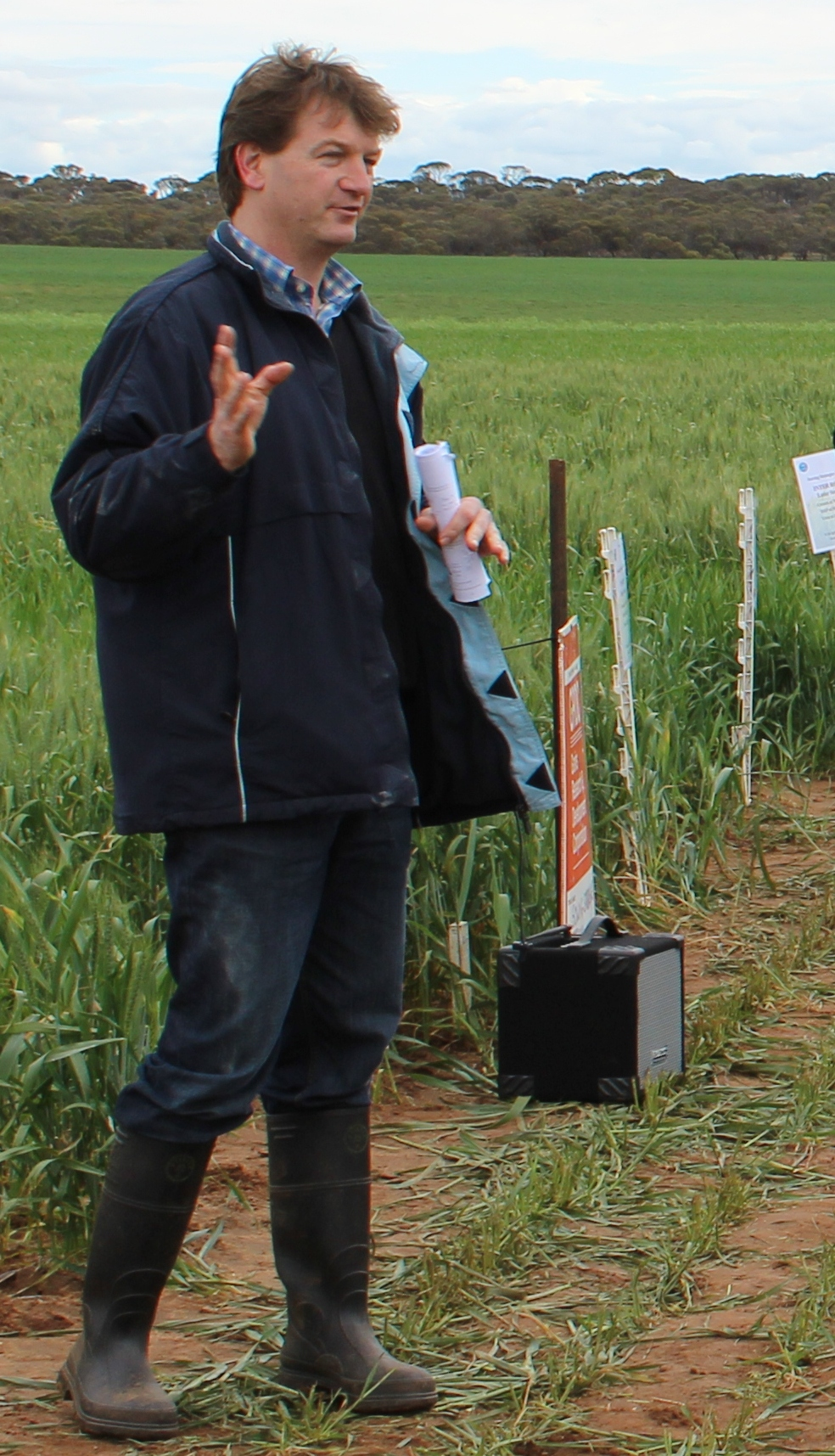 Dr Rick Llewellyn, CSIRO is a farming systems researcher says the overall cost of weeds to Australian grain growers is estimated to be $3.3b, or over $140/ha in expenditure and losses.