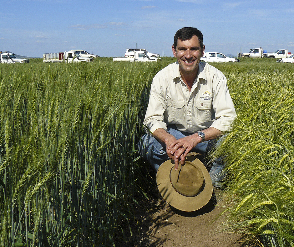 Northern Grower Alliance CEO Richard Daniel says that managing fleabane and feathertop Rhodes grass (FRT) in-crop or immediately after harvest is more effective than later in the summer when the plants are large and moisture-stressed (Photo courtesy of GRDC).
