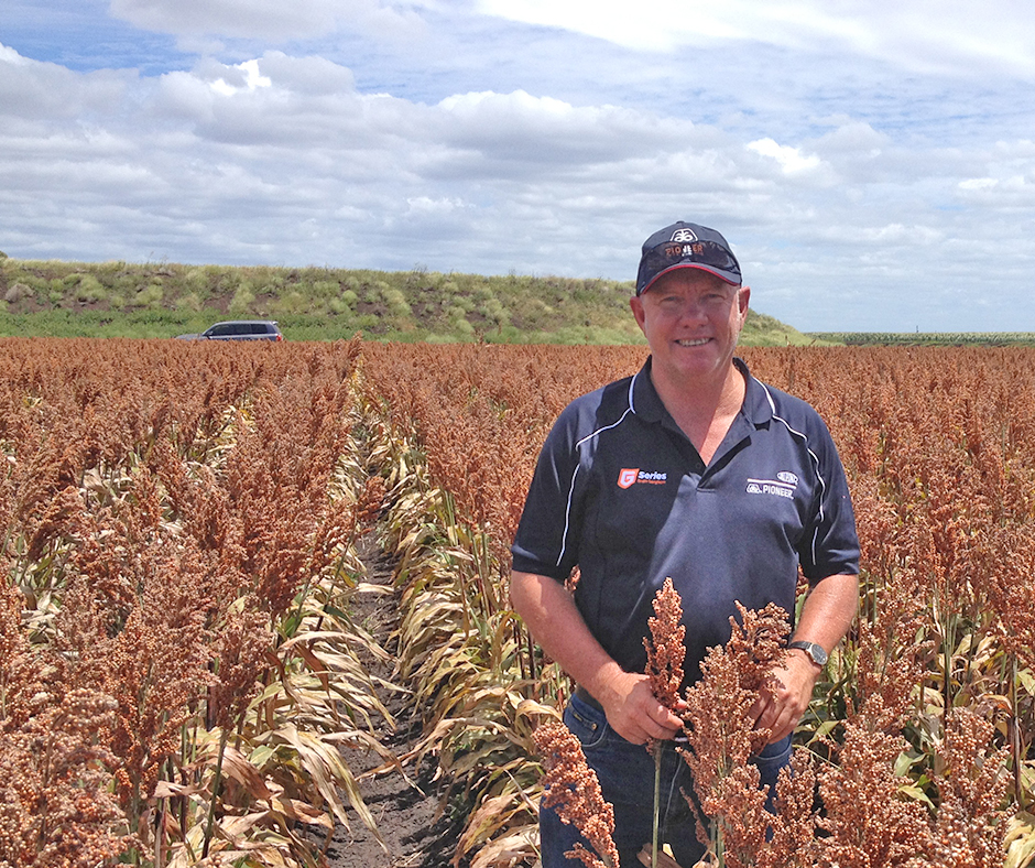 Rob Crothers, Australian grain corn and sorghum product manager with DuPont Pioneer, says that effective weed control prior to and at planting is essential to preserve yield in both sorghum and corn crops.