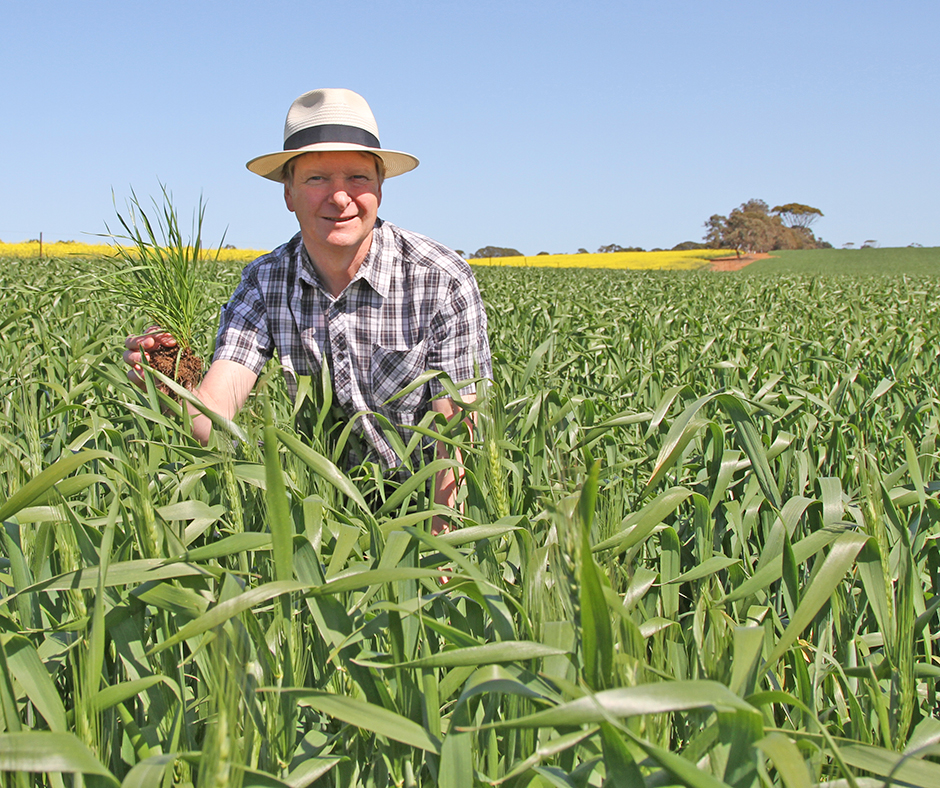 Dr Chris Preston, University of Adelaide will be speaking about residual herbicides and how to correctly use them to minimise resistance in problem weeds such as barnyard grass.