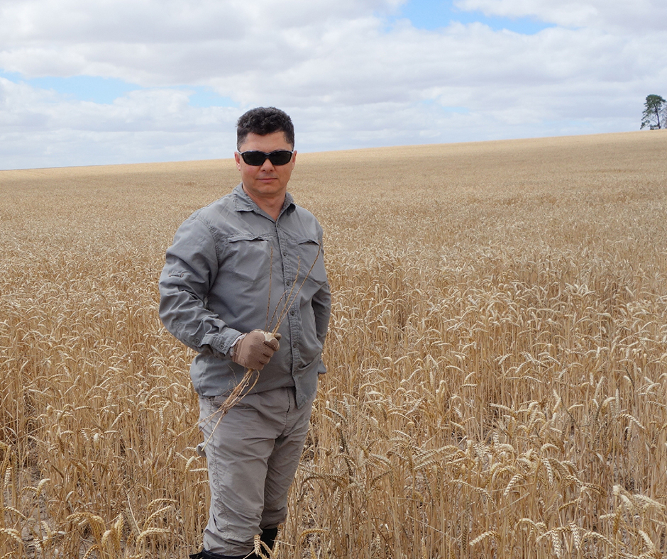 Dr Peter Boutsalis conducts random weed surveys across the southern states testing weeds for herbicide resistance under a range of management and land use conditions.