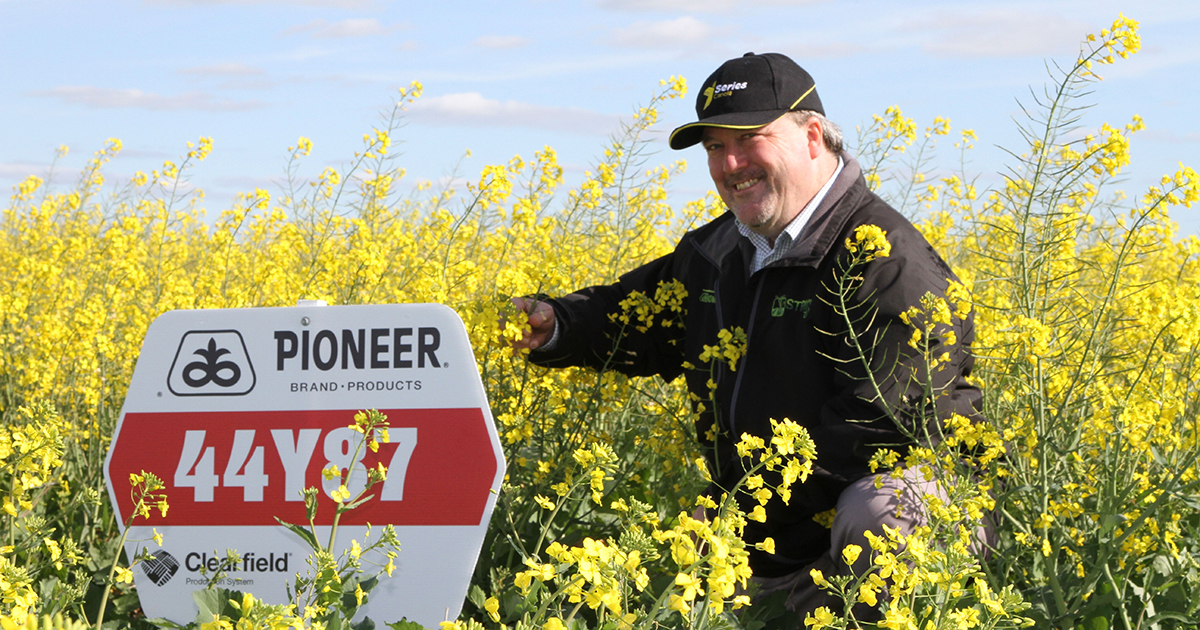 Kevin Morthorpe, GenTech Seeds, is concerned that canola growers are relying too heavily on the less competitive triazine-tolerant (TT) cultivars and missing out on the higher yield and better weed control benefits of hybrid canola systems.