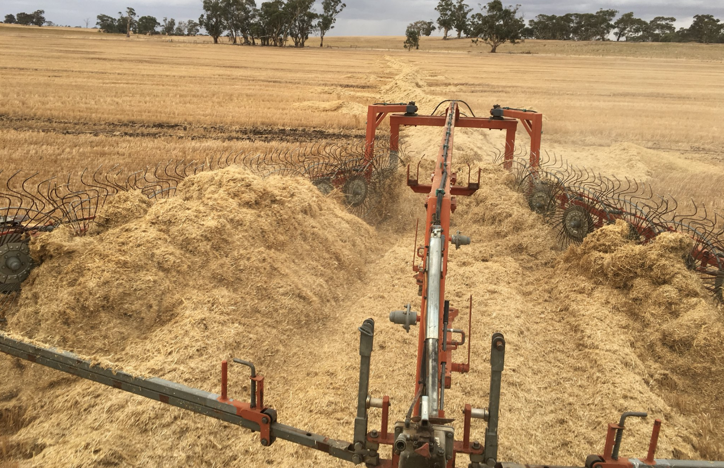 Chaff dump management and 'strip and disc' systems