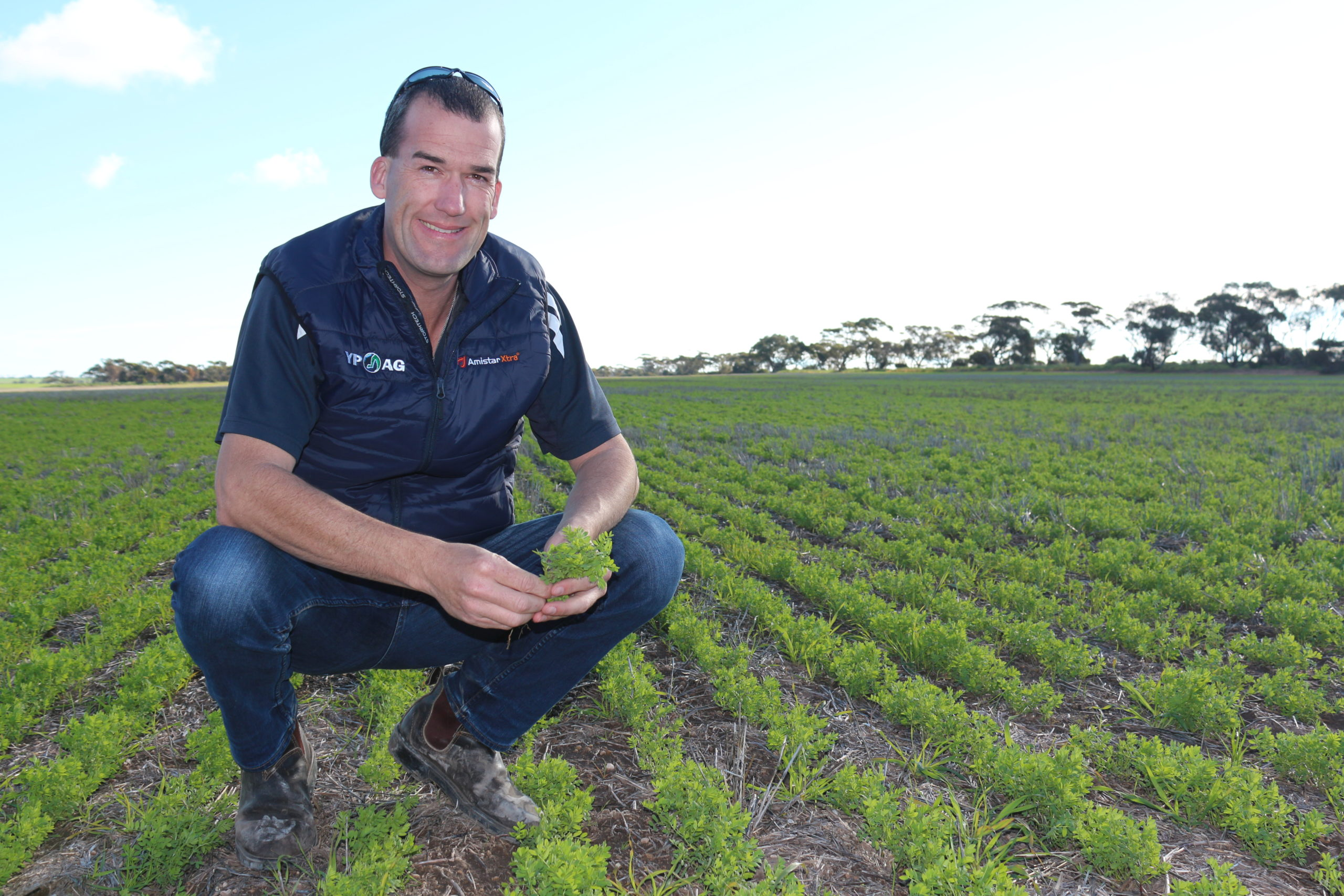 Weather forecast accuracy and crop competition trial results