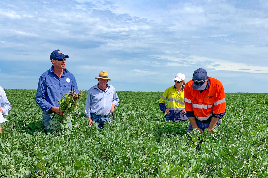 Regional Update – Southern Extension Agronomist, Greg Condon, Junee