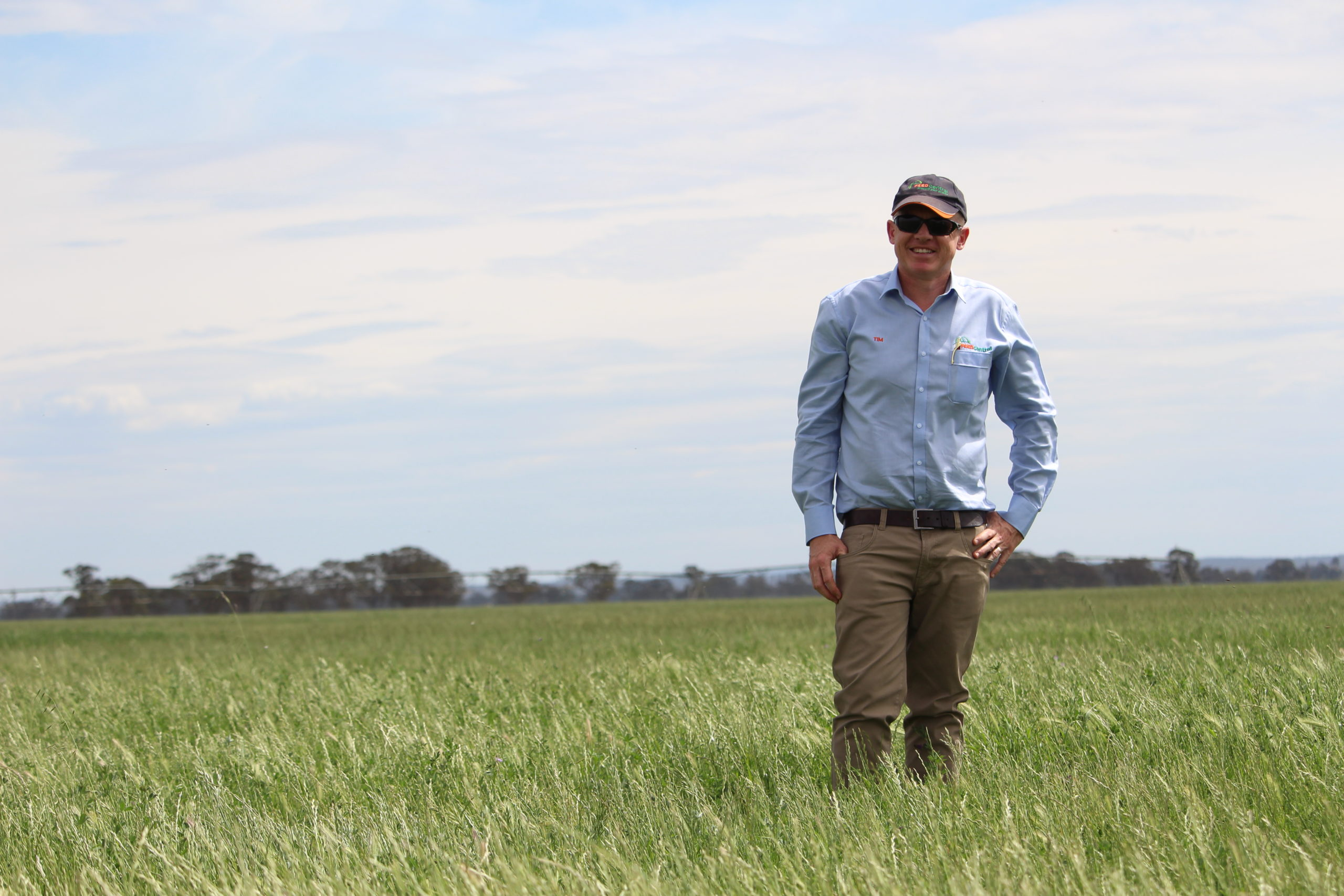 Redekop weed seed impact mill and hay market overview