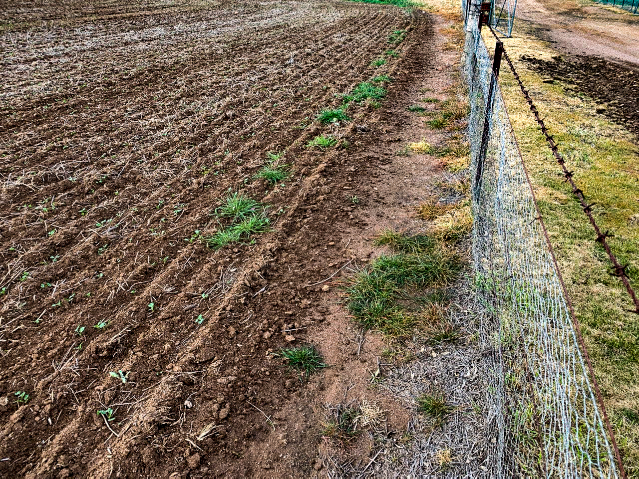What role Group G herbicides are playing in farming systems