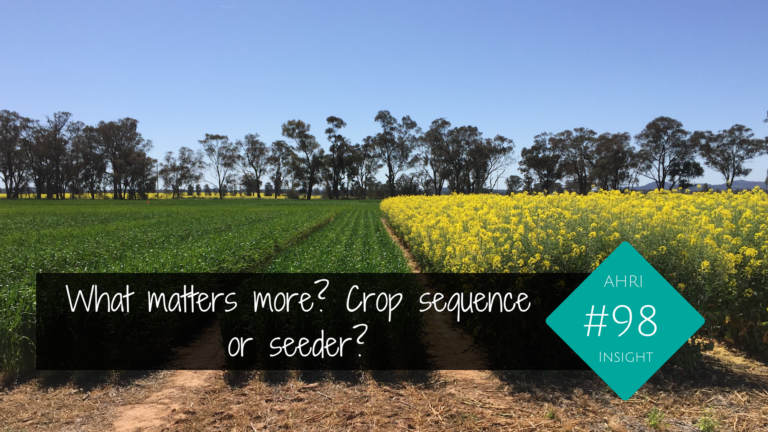 What matters more? Crop sequence or seeder?