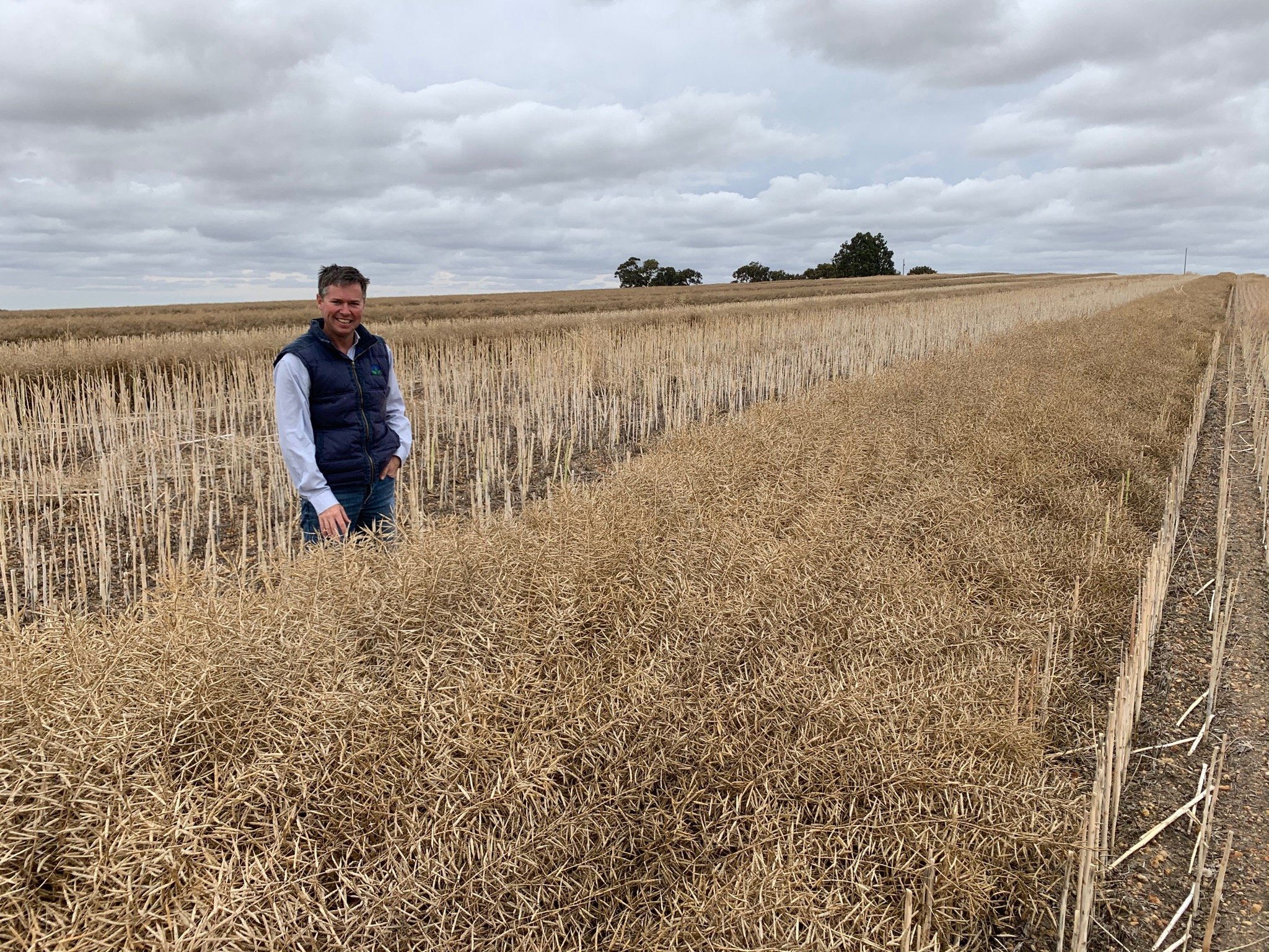 Voraxor crash course and why you might consider a double paraquat knockdown