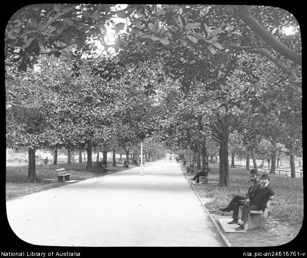 Hyde Park in the 1920's commonly known as