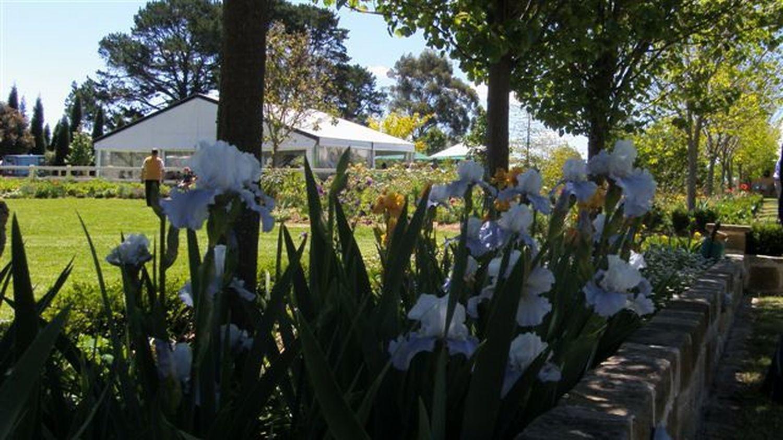 Beecroft Committee Open Garden