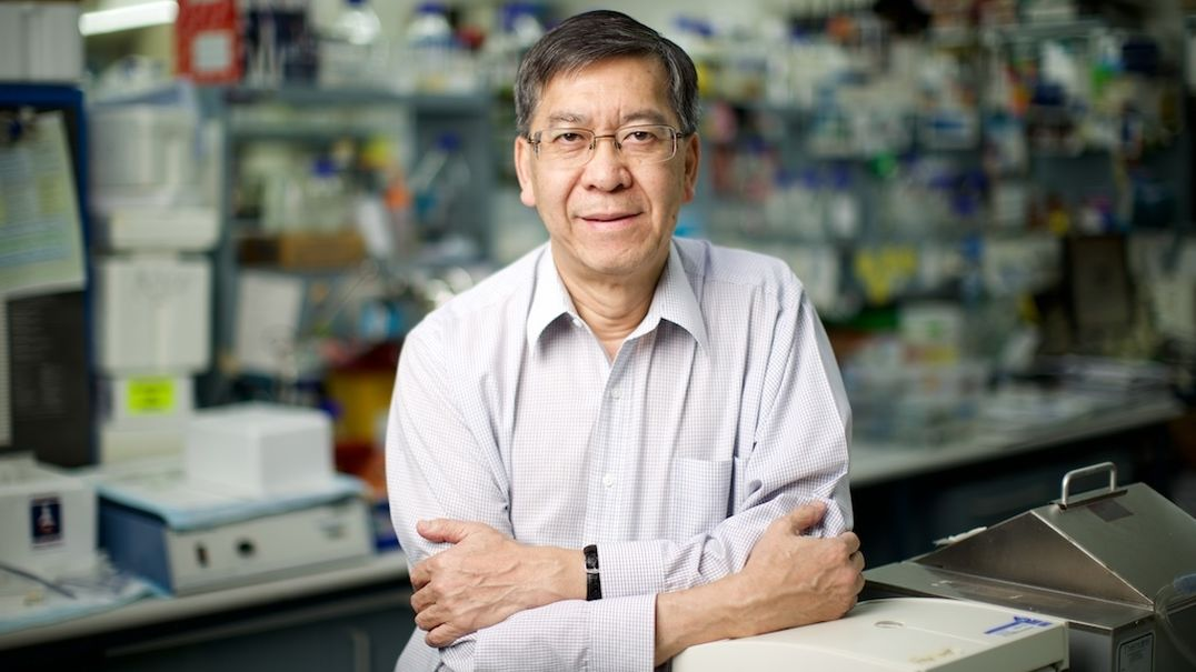 Prof Patrick Tam