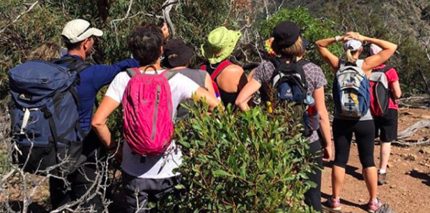 Lysterfield Beginners Hike