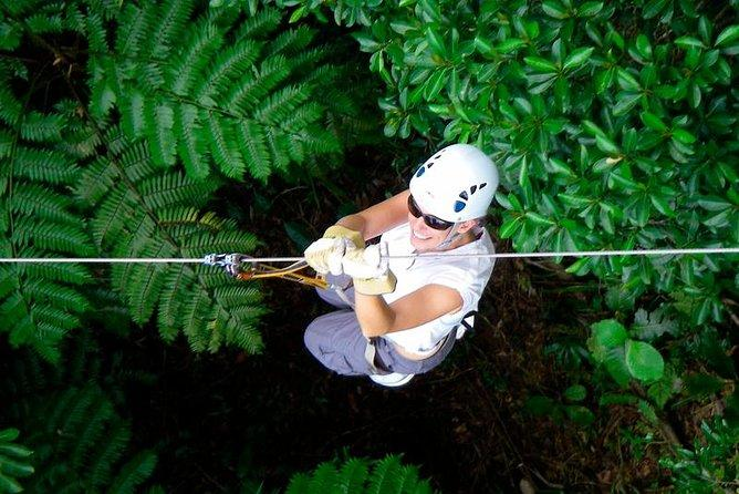 Half-Day Fiji Zip-Line Tour From Coral Coast Hotels