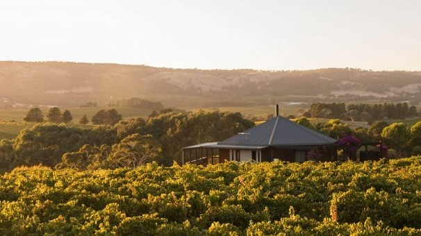 View over the vineyard retreat, McLaren Vale