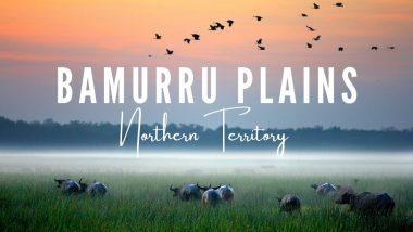 Bamurru Plains – Northern Territory
