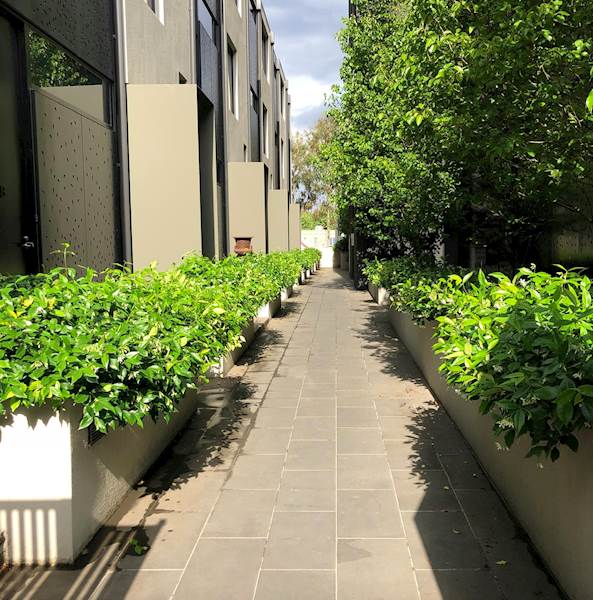 House Share South Yarra, Melbourne $295pw, 2 Bedroom Apartment