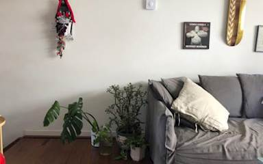 House share Annandale, Sydney $370pw, 2 bedroom house