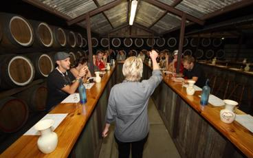 Hunter Valley Wine, Distillery, Cheese & Chocolate Tour - Ex Sydney or Hunter Valley