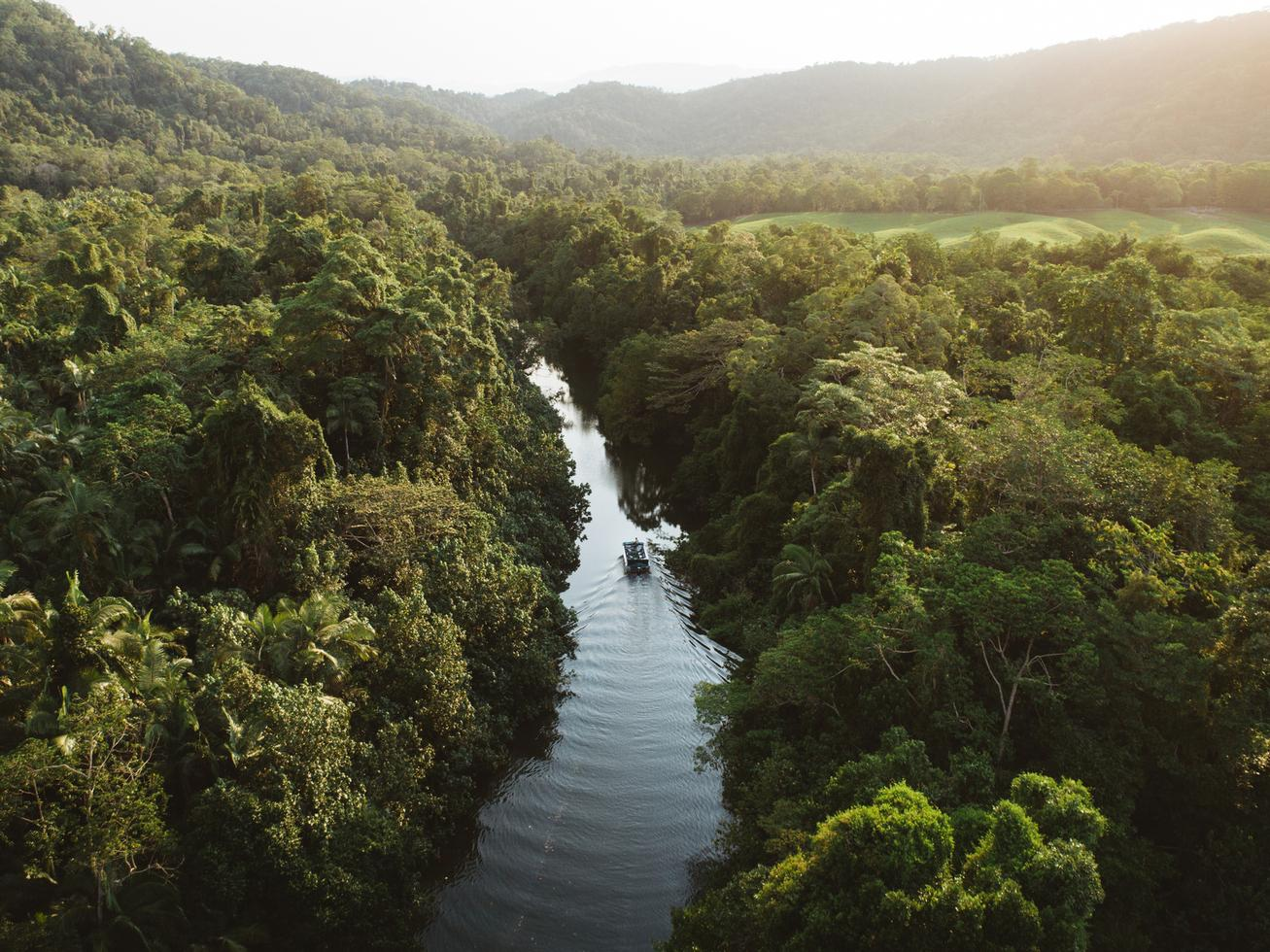 Stay in the Heart of the World Heritage-listed Daintree Rainforest at the Daintree Ecolodge