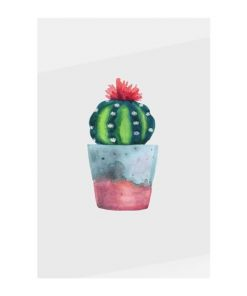 The Succulent Print Metal Print Medium Blossom Two