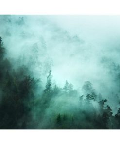 The Mist Print Canvas Small
