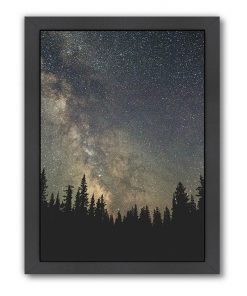 Stars over the Forest II Print Art