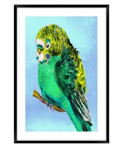 Green Budgie #2 Framed Wall Art
