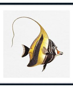 Tropical Fish Collection #7 Wall Art