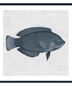 Tropical Fish Collection #4 Wall Art