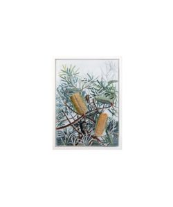 Yellow Wing Framed Canvas Print