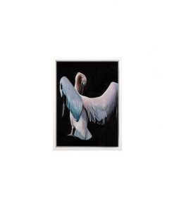 Pelican Framed Canvas Print
