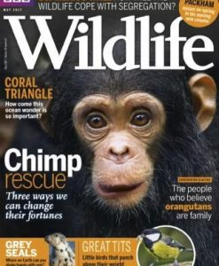 BBC Wildlife (UK) Magazine 12 Month Subscription