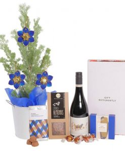 Traditional Christmas Plant Hamper