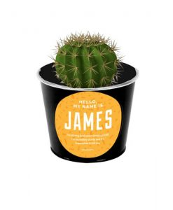 James the Cactus