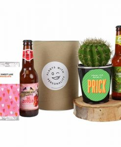 Sorry For Being a Prick Beers and Cactus Gift