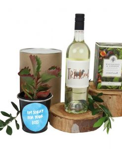 I'm Sorry for Your Loss Succulent and White Wine Hamper