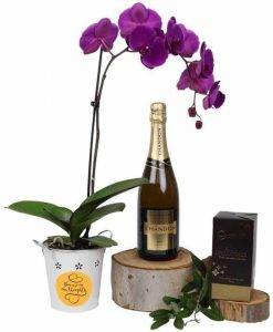 You're in my thoughts Orchid Luxury Hamper